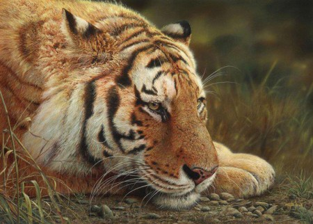 Beauty At Rest by Canadian Artist Denis Mayer Jr
