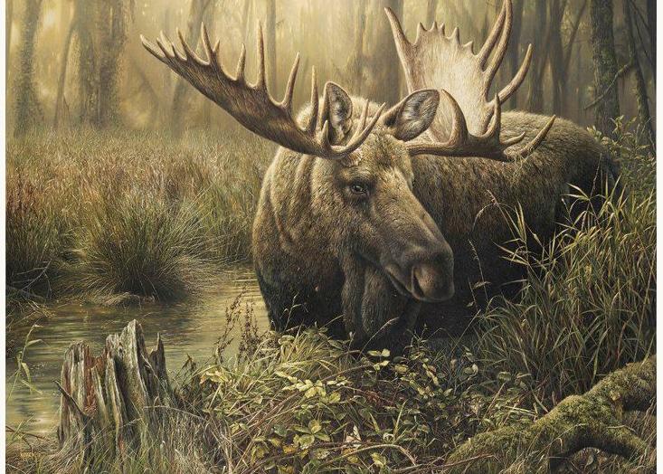 Dominating Presence by Canadian Artist Denis Mayer Jr