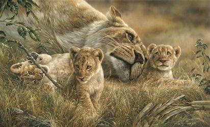 Mother's Love - Denis Mayer Jr.