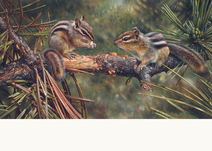 Twin Foragers by Denis Mayer Jr., Canadian Wildlife Artist
