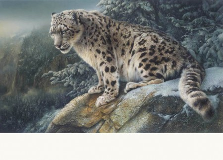 Mountain Patrol by Canadian Wildlife Artist Denis Mayer Jr.